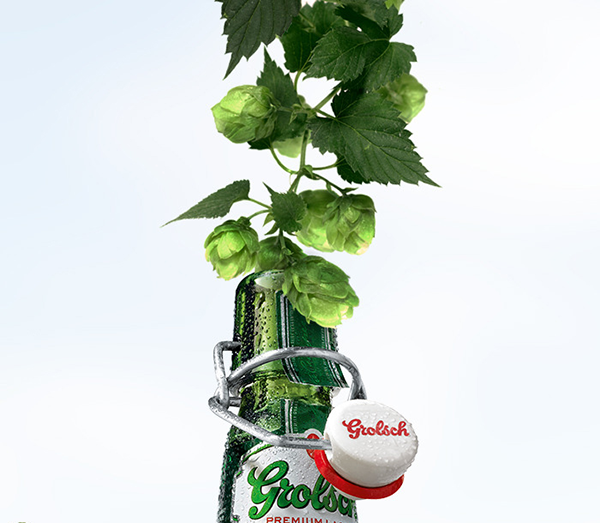 Duurzaamste Bierbrouwerij
